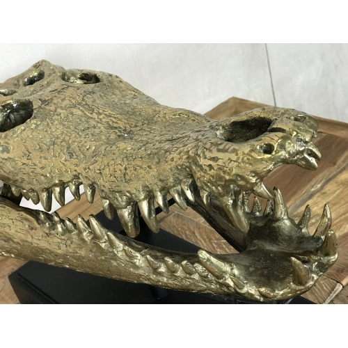 Tête de crocodile en bronze sur socle